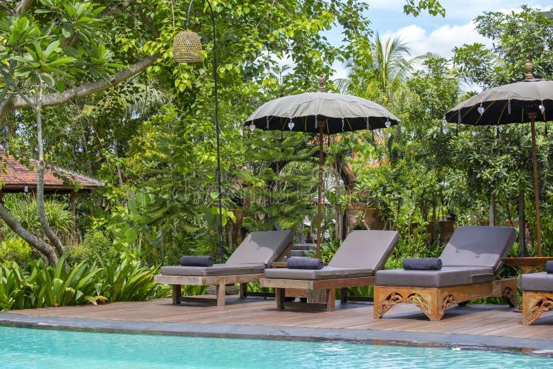 Πισίνα, μπλε νερό, πράσινα φύλλα των δέντρων και καρέκλες γεφυρών στον τροπικό κήπο Μπαλί, Ubud, Ινδονησία στοκ φωτογραφίες