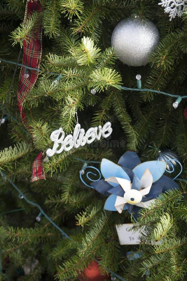 Πιστεύω στα Χριστούγεννα στοκ εικόνα με δικαίωμα ελεύθερης χρήσης
