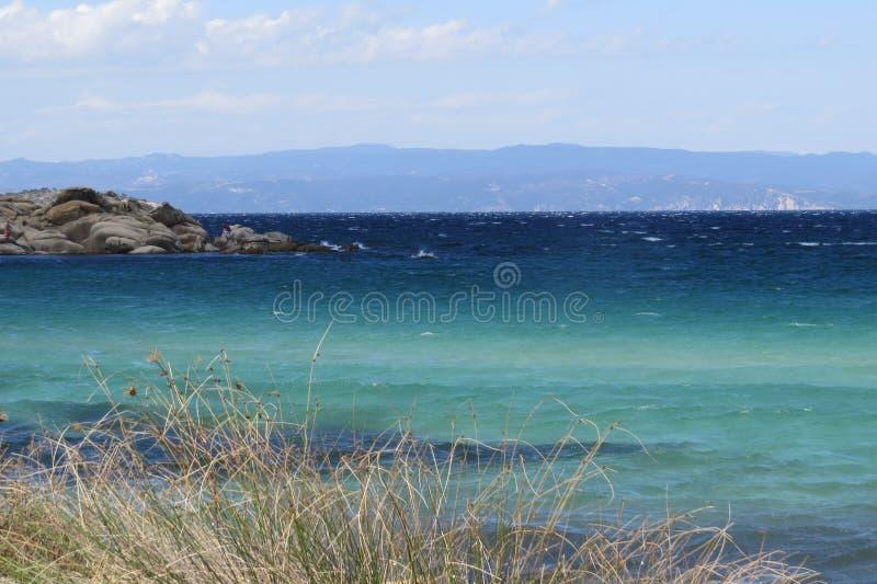 Πιό μπλε θάλασσα πάντα Πορφυρά λουλούδια Vourvourou Ελλάδα στοκ εικόνα με δικαίωμα ελεύθερης χρήσης