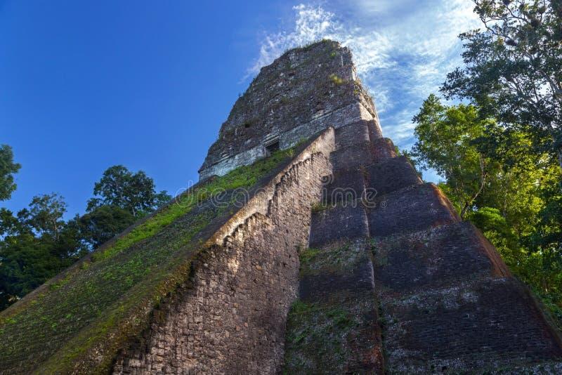 Πλάγια όψη των αρχαίων των Μάγια καταστροφών πυραμίδων, γνωστή ως ναό 5 Tikal ή ναός Β, στο παγκοσμίως διάσημο εθνικό πάρκο Γουατ στοκ φωτογραφία