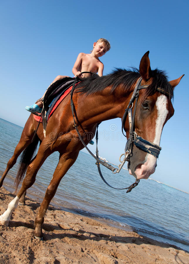 πλάτη αλόγου αγοριών στοκ εικόνες με δικαίωμα ελεύθερης χρήσης