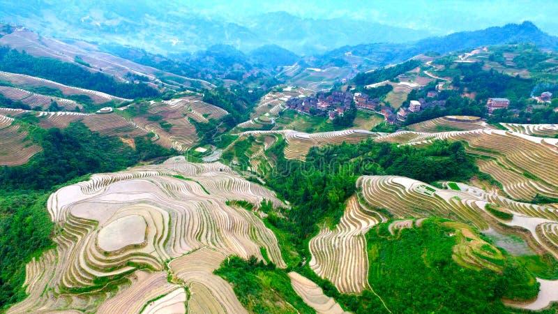 Πλάτη δράκων ` s Guilin Guangxi στοκ φωτογραφία με δικαίωμα ελεύθερης χρήσης