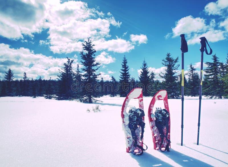 Πλέγματα σχήματος ρακέτας στο χιόνι Χειμερινό ίχνος πέρα από τους χιονώδεις λόφους και τα βουνά στοκ εικόνες με δικαίωμα ελεύθερης χρήσης