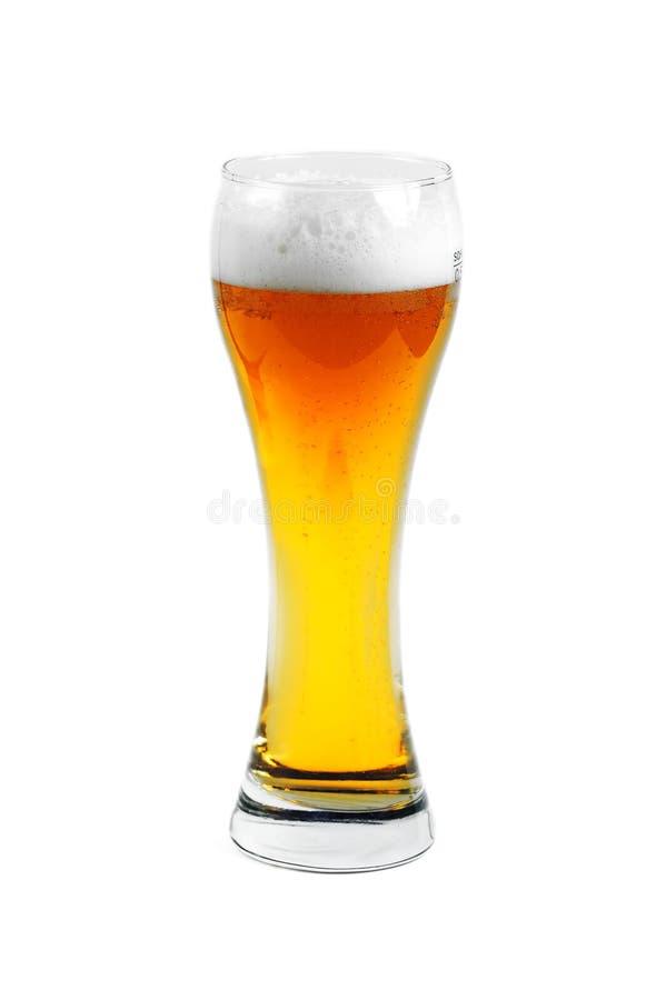 πλήρες γυαλί μπύρας στοκ εικόνα με δικαίωμα ελεύθερης χρήσης