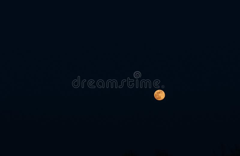 Πλήρες κίτρινο φεγγάρι στο σκοτεινό ουρανό στοκ εικόνες με δικαίωμα ελεύθερης χρήσης