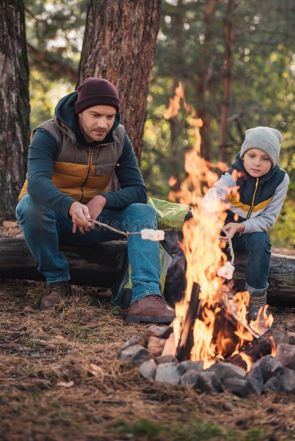 πλήρης άποψη μήκους μαγειρεύοντας marshmallows πατέρων και γιων στην πυρά προσκόπων στοκ φωτογραφία με δικαίωμα ελεύθερης χρήσης