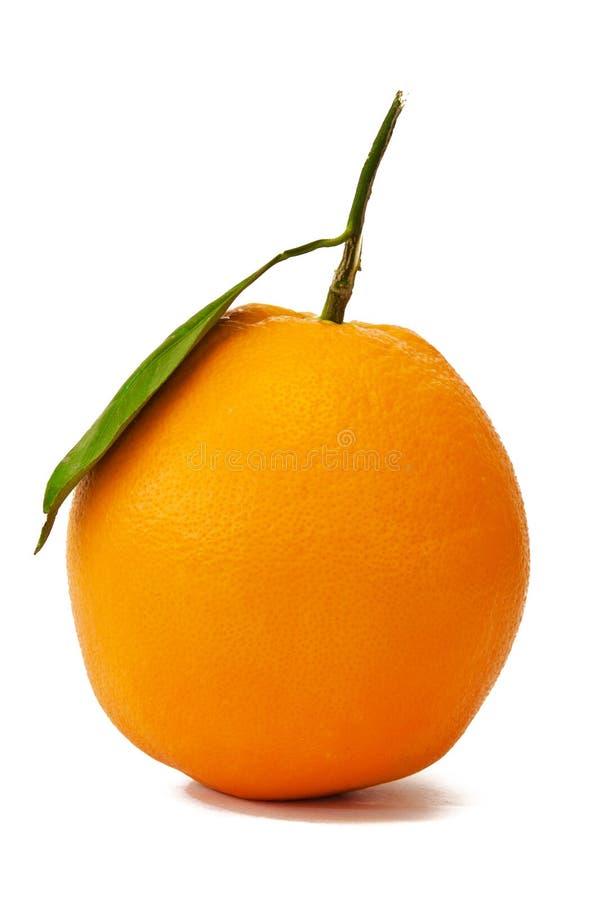 πλήρης πορτοκαλής ενιαί&omicro στοκ φωτογραφία