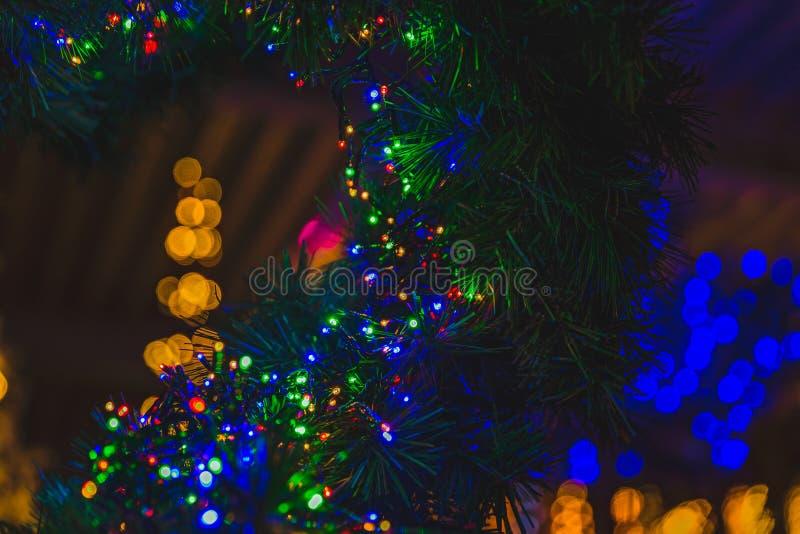 Πλήρη φω'τα χρώματος σε ένα χριστουγεννιάτικο δέντρο στοκ εικόνες