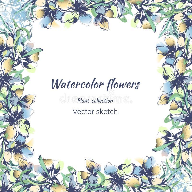Πλαίσιο κειμένων για τα λουλούδια watercolor για τους χαιρετισμούς και τις προσκλήσεις Ελαφρύ υπόβαθρο των λεπτών πράσινων και μπ διανυσματική απεικόνιση