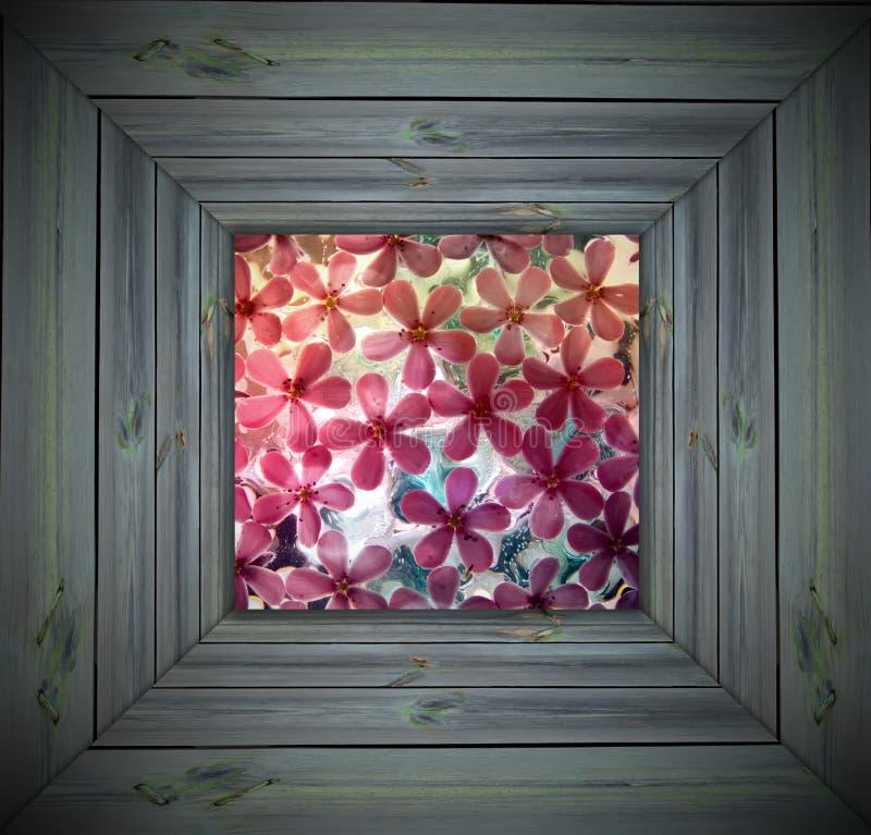 πλαίσιο λουλουδιών πα&gamm στοκ εικόνες με δικαίωμα ελεύθερης χρήσης