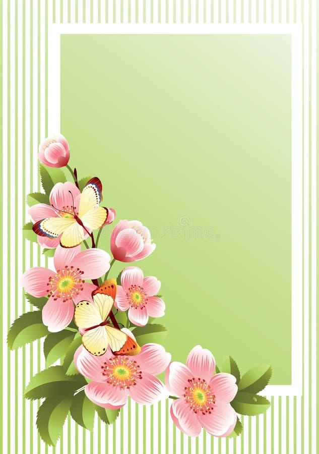 πλαίσιο λουλουδιών ελεύθερη απεικόνιση δικαιώματος