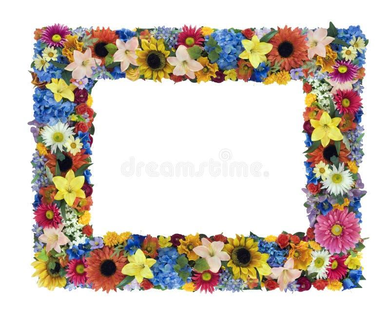 πλαίσιο λουλουδιών στοκ φωτογραφία