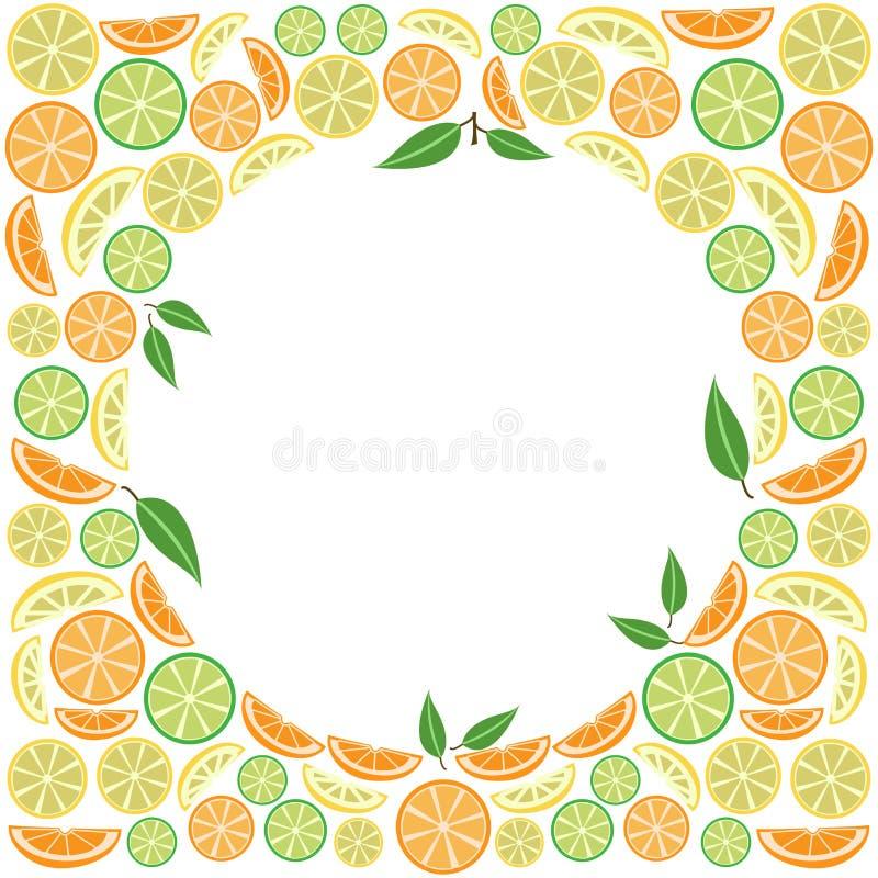 Πλαίσιο με τα εσπεριδοειδή φρούτων και φύλλα για το κείμενό σας r ελεύθερη απεικόνιση δικαιώματος