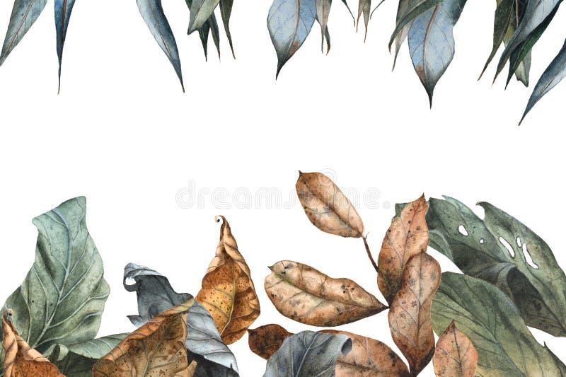 Πλαίσιο ορθογωνίων των ρεαλιστικών ξηρών φύλλων φθινοπώρου Watercolor ελεύθερη απεικόνιση δικαιώματος