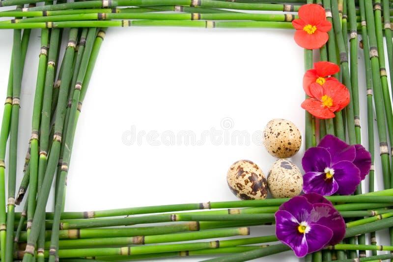 πλαίσιο Πάσχας πράσινο στοκ εικόνα