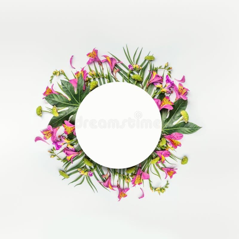 Πλαίσιο σύνθεσης θερινών τροπικό στρογγυλό λουλουδιών με τα φύλλα φοινικών στο λευκό στοκ φωτογραφία