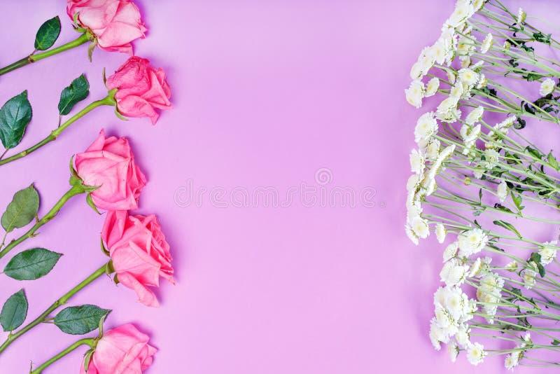 Πλαίσιο των ρόδινων και άσπρων λουλουδιών στο ρόδινο υπόβαθρο Floral σύνθεση με τη θέση για το κείμενο στοκ εικόνα με δικαίωμα ελεύθερης χρήσης