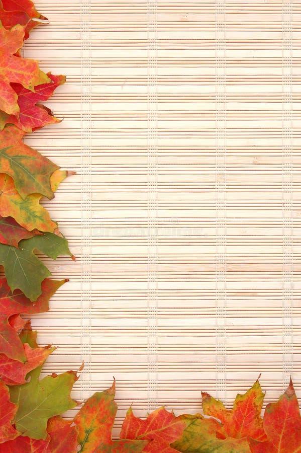 πλαίσιο φθινοπώρου στοκ εικόνες