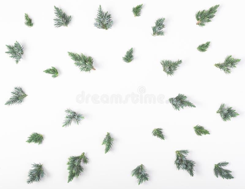 Πλαίσιο φιαγμένο από κλάδους ιουνιπέρων που απομονώνονται στο άσπρο υπόβαθρο Τοπ όψη Επίπεδος βάλτε Χριστούγεννα ή νέα σύνθεση έτ στοκ εικόνες