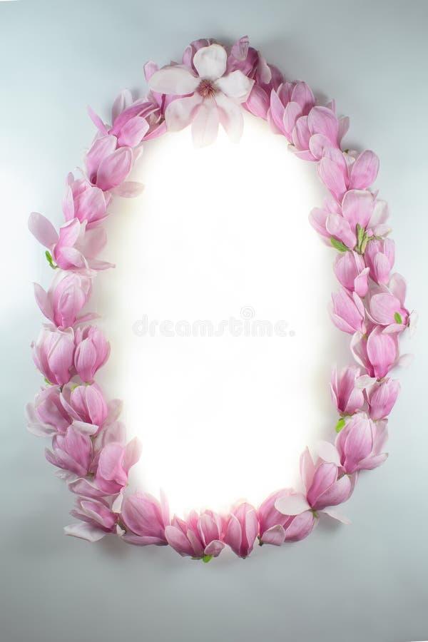 Πλαίσιο φιαγμένο από λουλούδια magnolia σε έναν λευκό πίνακα στοκ φωτογραφίες