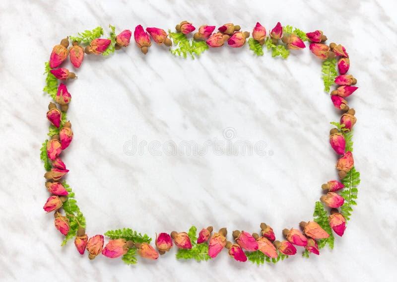 Πλαίσιο φιαγμένο από ξηρά τριαντάφυλλα και πράσινα φύλλα στοκ φωτογραφία με δικαίωμα ελεύθερης χρήσης