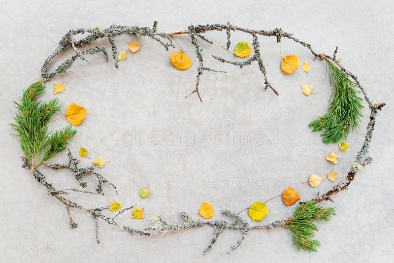 Πλαίσιο φιαγμένο από φύλλα φθινοπώρου και mossy κλάδους δέντρων στοκ φωτογραφίες με δικαίωμα ελεύθερης χρήσης