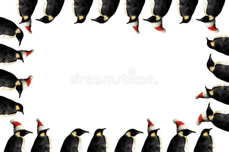 πλαίσιο Χριστουγέννων penguin ελεύθερη απεικόνιση δικαιώματος