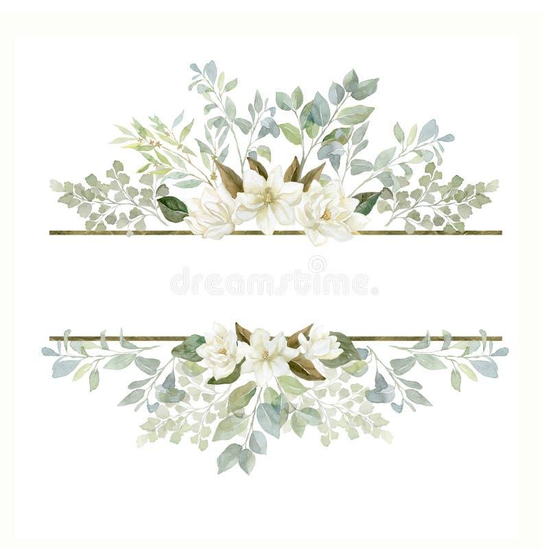Πλαίσιο Magnolia Watercolor με τα φυτά και τα φύλλα διανυσματική απεικόνιση