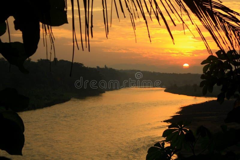 Πλαισιώνοντας τροπικός ποταμός ηλιοβασιλέματος στοκ εικόνα με δικαίωμα ελεύθερης χρήσης