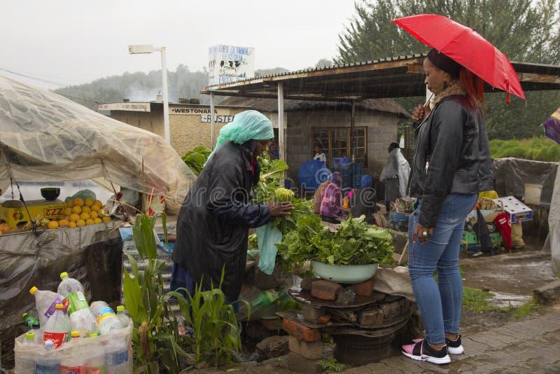 Πλανόδιος πωλητής που πωλεί τα φρέσκα φρούτα και λαχανικά στοκ φωτογραφία