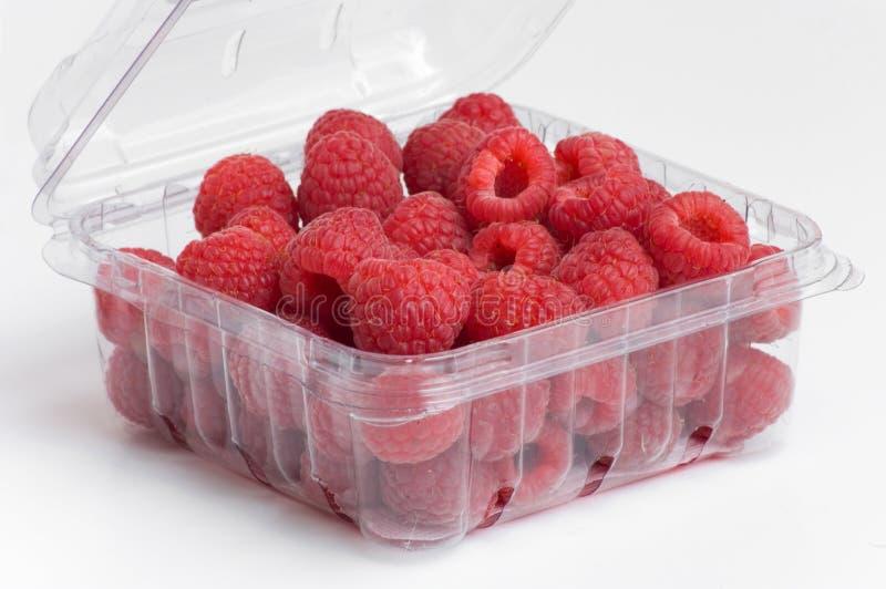 πλαστικό κόκκινο σμέουρων εμπορευματοκιβωτίων στοκ εικόνες