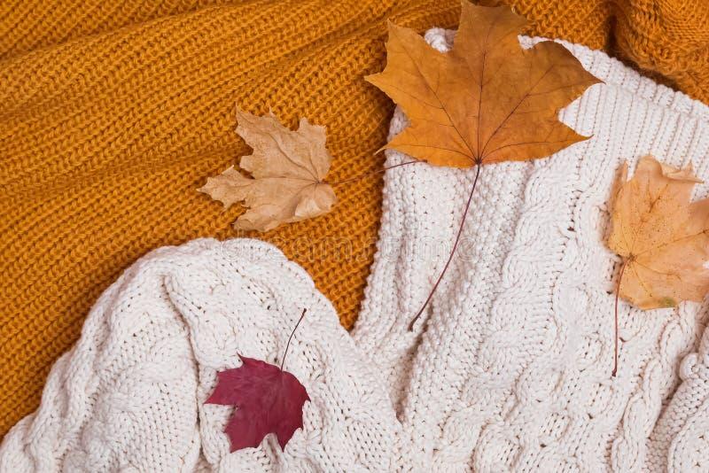 Πλεκτά πουλόβερ και ξηρά κινηματογράφηση σε πρώτο πλάνο φύλλων στοκ φωτογραφίες
