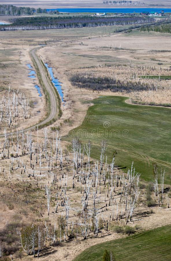 Πλημμύρα άνοιξη σε Altai στοκ εικόνα
