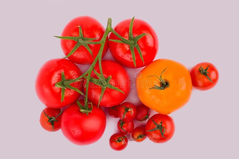 Πλυμένες καθαρές ντομάτες και ντομάτες κερασιών στοκ εικόνα με δικαίωμα ελεύθερης χρήσης