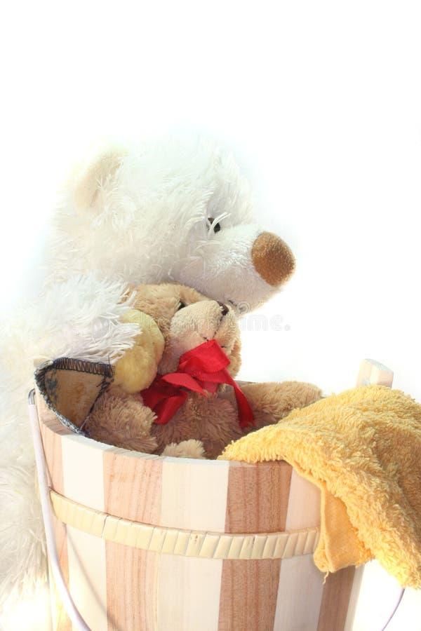πλυντήριο teddy στοκ εικόνες