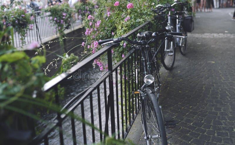 Ποδήλατα που σταθμεύουν στην οδό εκτός από το κανάλι στοκ φωτογραφία με δικαίωμα ελεύθερης χρήσης