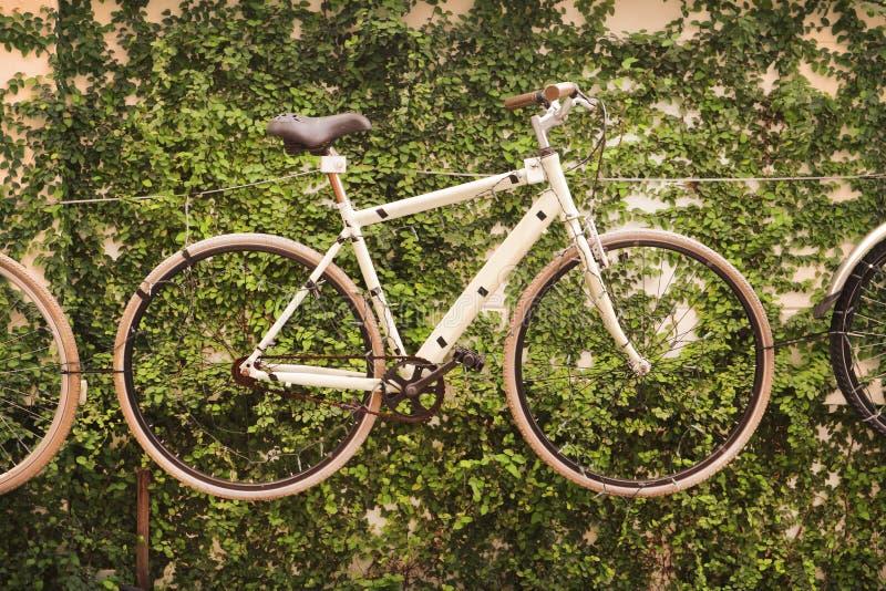 Ποδήλατο με το πράσινο εκλεκτής ποιότητας ύφος φύλλων στοκ φωτογραφίες
