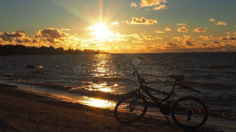 Ποδήλατο στη φύση Όμορφα φύση και αθλητικό ποδήλατο, λεπτομέρειες στοκ εικόνες