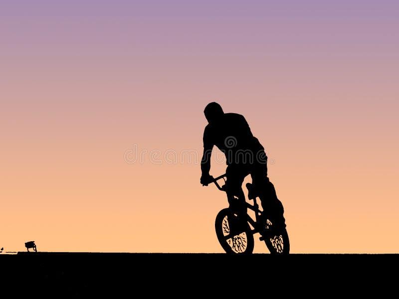ποδηλάτης ποδηλάτων Bmx Στοκ Εικόνα