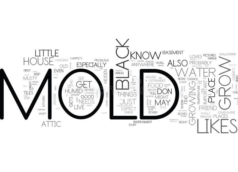 Ποια μαύρη φόρμα επιθυμεί να αυξηθεί στο σύννεφο του Word προβληματικών σημείων σπιτιών σας S απεικόνιση αποθεμάτων