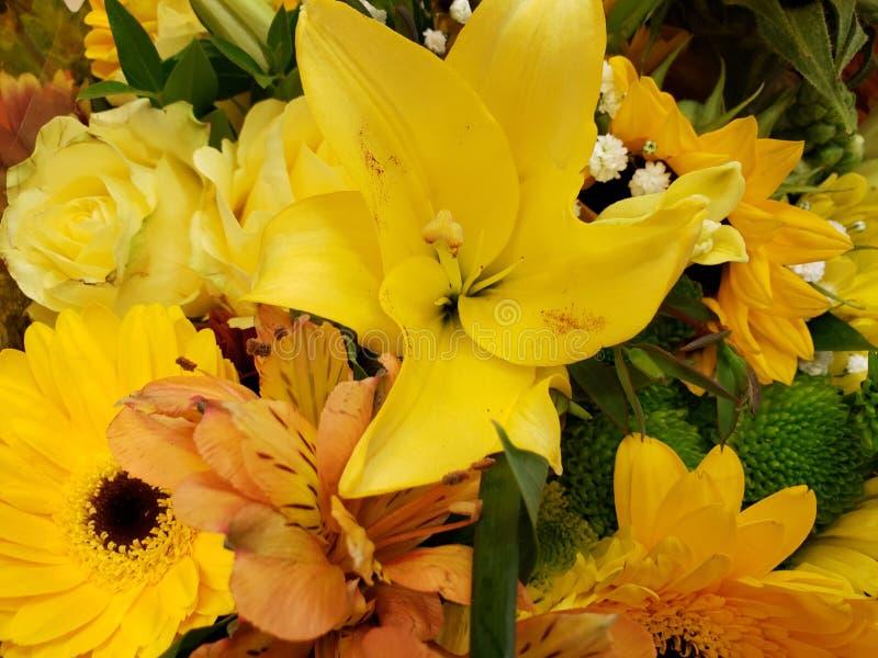 ποικιλία του λουλουδιού σε κίτρινο σε μια floral ανθοδέσμη, ένα υπόβαθρο και μια σύσταση στοκ φωτογραφία