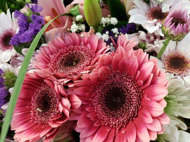 ποικιλία του λουλουδιού σε μια floral ανθοδέσμη, ένα υπόβαθρο και μια σύσταση στοκ εικόνες με δικαίωμα ελεύθερης χρήσης