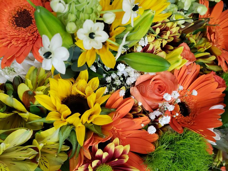 ποικιλία του λουλουδιού σε μια floral ανθοδέσμη, ένα υπόβαθρο και μια σύσταση στοκ φωτογραφία με δικαίωμα ελεύθερης χρήσης