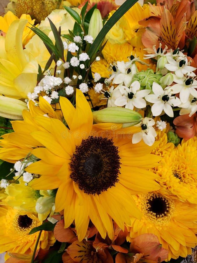 ποικιλία του λουλουδιού στα κίτρινα χρώματα σε μια floral ανθοδέσμη, ένα υπόβαθρο και μια σύσταση στοκ εικόνες με δικαίωμα ελεύθερης χρήσης