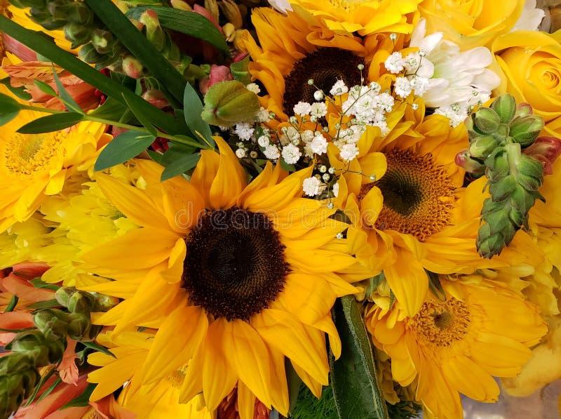 ποικιλία του λουλουδιού στα κίτρινα χρώματα σε μια floral ανθοδέσμη, ένα υπόβαθρο και μια σύσταση στοκ εικόνα