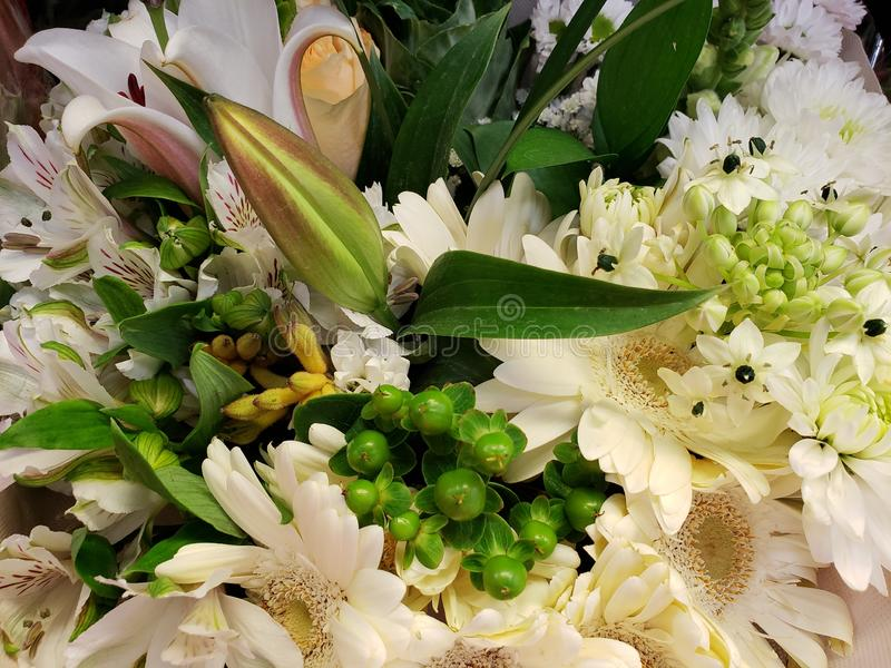 ποικιλία του λουλουδιού στο άσπρο χρώμα σε μια floral ανθοδέσμη στοκ εικόνα με δικαίωμα ελεύθερης χρήσης