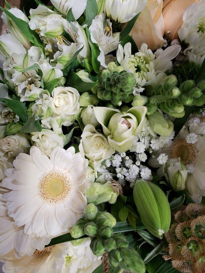 ποικιλία του λουλουδιού στο λευκό σε μια floral ανθοδέσμη, ένα υπόβαθρο και μια σύσταση στοκ εικόνες
