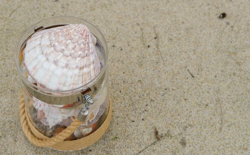 Ποικιλία των κοχυλιών θάλασσας στο βάζο γυαλιού στην παραλία άμμου με το διάστημα αντιγράφων έννοια διακοπών στοκ φωτογραφία