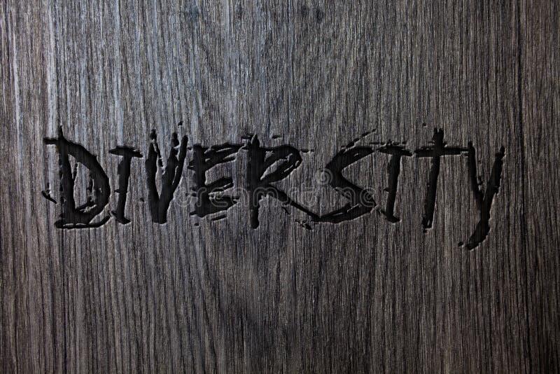 Ποικιλομορφία κειμένων γραψίματος λέξης Επιχειρησιακή έννοια για να αποτελέσθείται από τη διαφορετική ξύλινη ξύλινη ΤΣΕ Multiethn στοκ φωτογραφίες με δικαίωμα ελεύθερης χρήσης