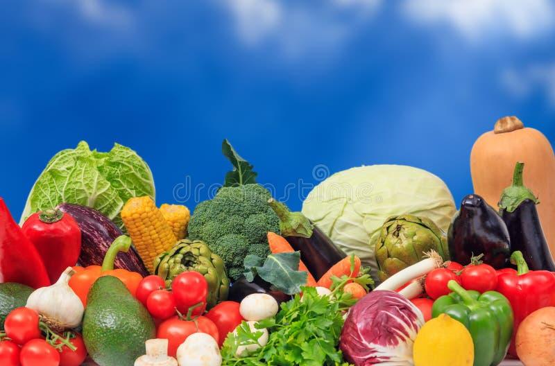 Ποικιλία των λαχανικών στο μπλε υπόβαθρο στοκ εικόνα με δικαίωμα ελεύθερης χρήσης